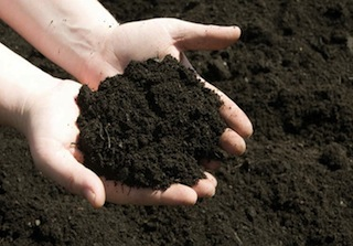 soil-in-hands.jpg